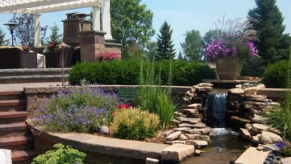 Backyard water feature, planting, and outdoor fireplace.